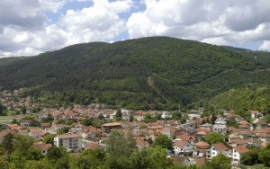 bosilegrad-1